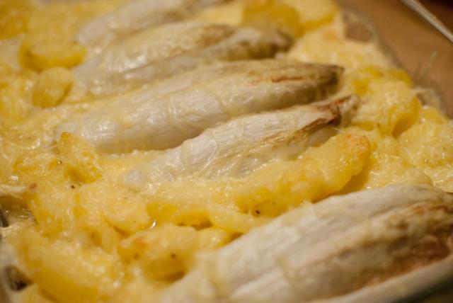 Kartoffel chicoree gratin nach dem backen